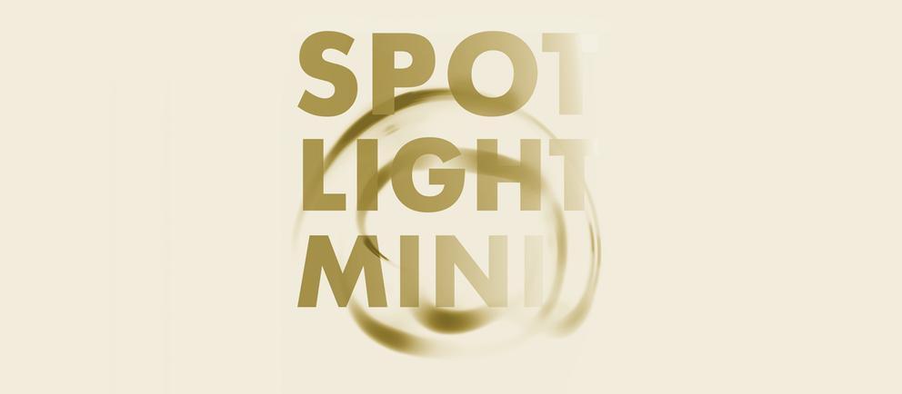 Spotlight-Mini
