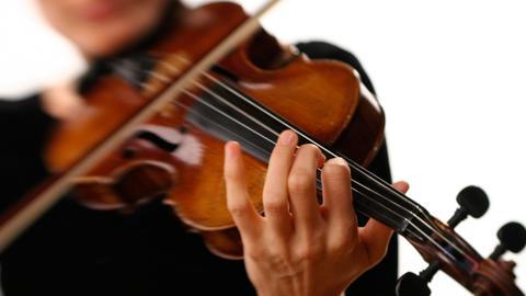 Musiker Violine