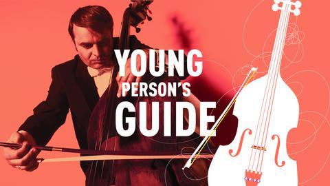 Young Person's Guide - Ioan Cristian Braica