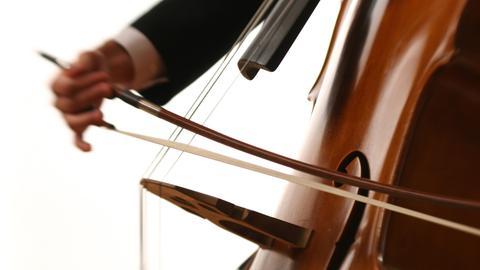 Musiker spielt Kontrabass