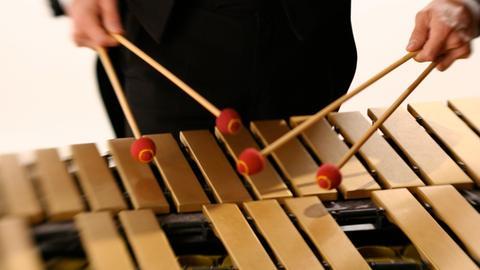 Musiker an Schlagwerk